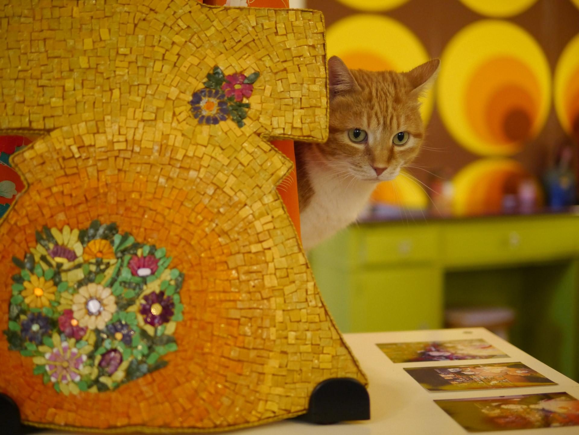 gatto e kimono barbara liverani studio Mosaico a Ravenna